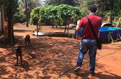 Rescatan a dos perros abandonados en Itá