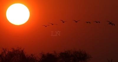 La Nación / Domingo con ambiente caluroso, húmedo y lluvias dispersas