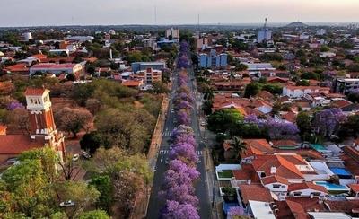 HOY / Asunción en filtro lila: temporada de jacarandas