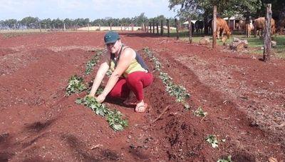 Mujeres rurales paraguayas se destacan por su labor y desempeño en la agricultura familiar