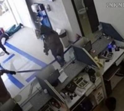 Policía cita golpes de banda de asaltantes desbaratada