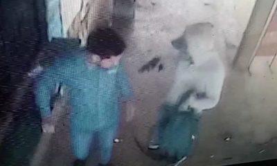 Inseguridad azota a trabajadores: Dos bandidos asaltan y roban dinero de vendedores de saldos – Diario TNPRESS