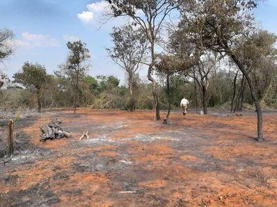 Asunción no tiene ningún foco de calor, mientras que Alto Paraguay tiene la mayor cantidad