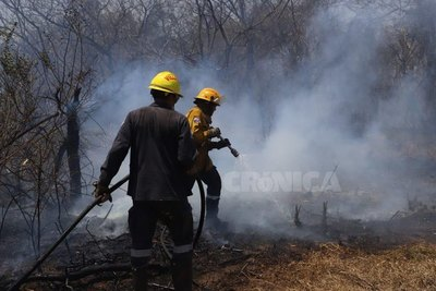 Crónica / (VIDEO) Feroz incendio en pastizal de Ypané