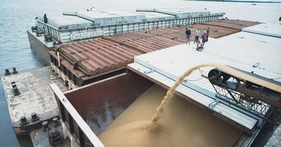 La Nación / Brasil se consolida como segundo destino más importante de la soja paraguaya