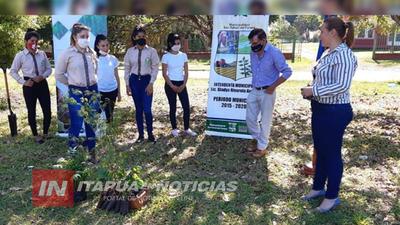 PROMUEVEN PLANTACIÓN DE ÁRBOLES NATIVOS EN APE AIME