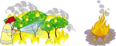 Incendios: efectos, mitigación
