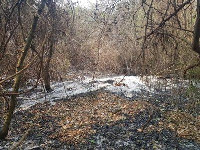 Persisten los focos de incendio en gran parte del país