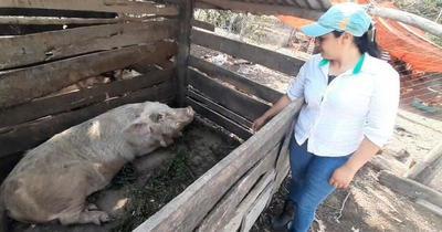 Se dedica a la cría y venta de animales para pagar sus estudios de Enfermería