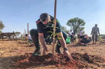 Inician plantación de 4.000 árboles en el predio del RC4 para instalar un corredor verde