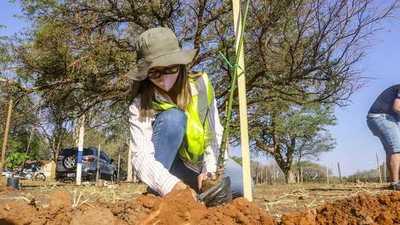 Plantarán 4.000 árboles nativos en el predio de RC4