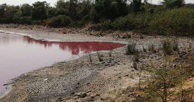 Definición de culpables se estanca mientras la laguna Cerro desaparece
