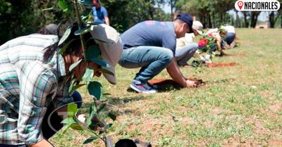 Diputados apoyan proyecto para plantar árboles durante campaña electoral