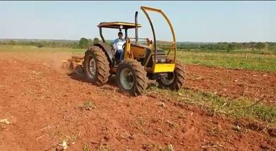 Intensifican siembra de productos agrícolas  en Liberación
