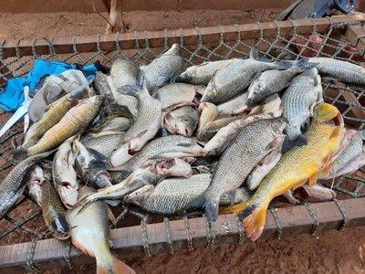 Denuncian mortandad de peces en el río Tebicuarymi