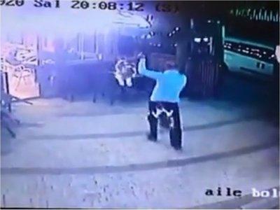 """""""Gato endemoniado"""" atacó a un hombre y fue viral"""