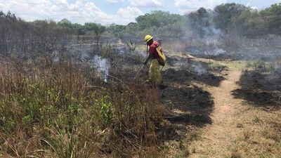 Jóvenes y bomberos arborizan zona afectada por incendio en Areguá