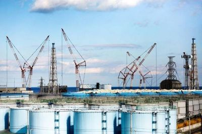 El agua de Fukushima puede dañar el ADN humano, dice el informe de Greenpeace