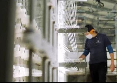 La pandemia, crisis y oportunidad para la industria textil nacional