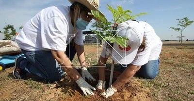 La Nación / Durante el Plantatón fueron colocadas 1.800 especies nativas en la Costanera
