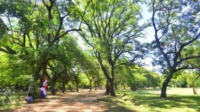 El Jardín Botánico reabrirá sus puertas desde este lunes