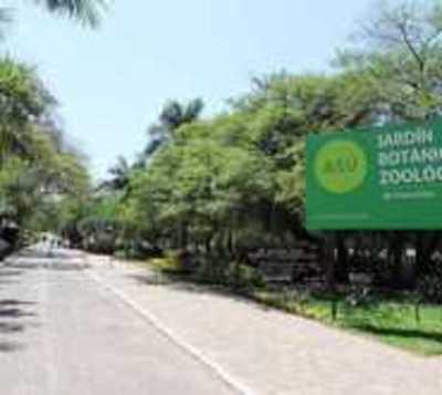 Reabrirán el Jardín Botánico desde este lunes