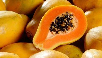 Cultivo de mamón, una alternativa de producción diversificada y rentable (es considerada una de las 8 frutas exóticas del planeta)