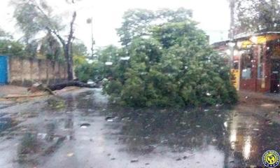 Tormenta: Vientos de casi 100 km/h en Luque •