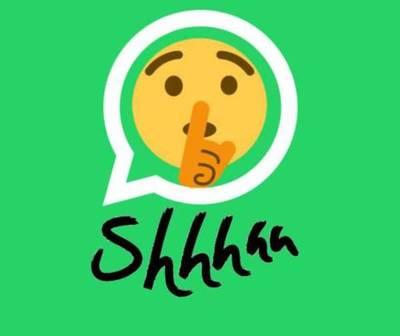 "Ya podés silenciar ""para siempre"" los chats en WhatsApp"