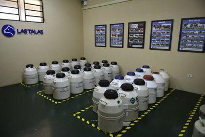 Las Talas vende el miércoles más de 60.000 dosis de semen y de 200 embriones