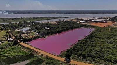 Confirman que Waltrading S.A. empresa contaminadora de Laguna Cerro sigue funcionando pese a prohibición