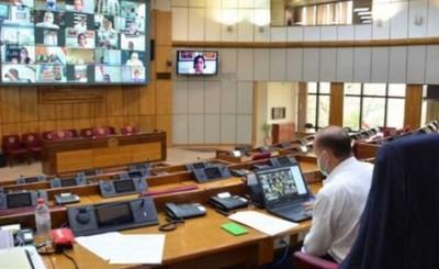 """Sesión extraordinaria del senado para """"sepultar"""" Ley de Insolvencia"""
