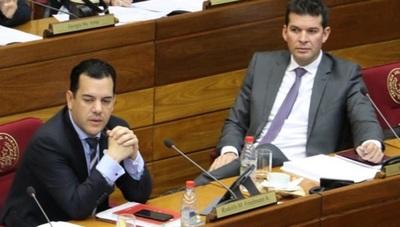 Friedmann solicita pérdida de investidura de Godoy por el caso Messer