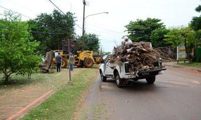 Municipalidad de CDE apoya a la ANDE con recolección de ramas