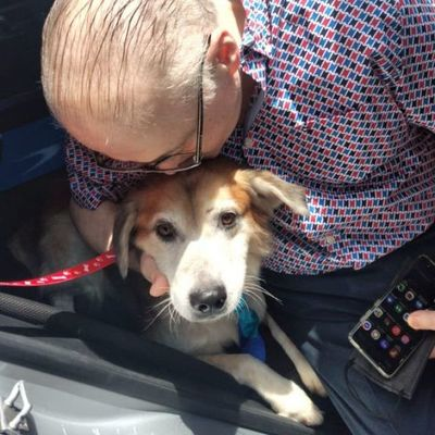 Caso Shelby: El perrito ya está con su nueva familia y ahora se llama Constantino
