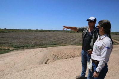 La soja tiene buenas perspectivas para la próxima zafra en el Chaco Central