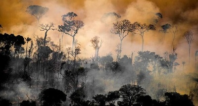 Continúan los incendios en Brasil