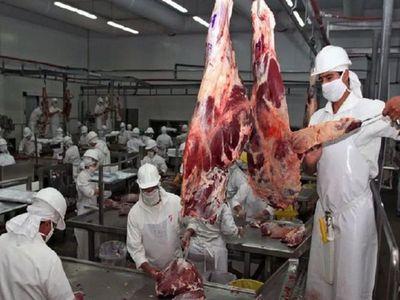 En octubre se registró la mayor faena de ganado
