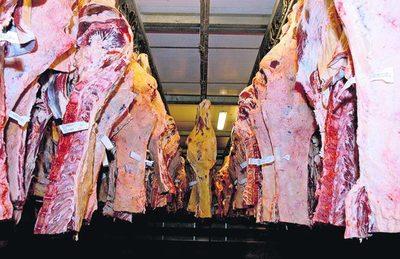 Argentina exportó más carne bovina pero a menos valor, durante septiembre