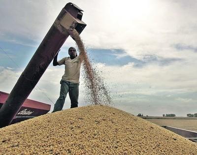 Octubre cerró el cuarto mes de subas consecutivas para el precio de la soja y el maíz