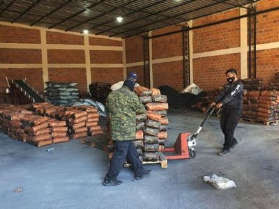 Encuentran en un depósito de Turrini restos de droga en bolsas de carbón