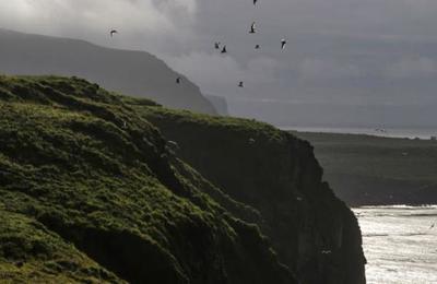 Esta es la isla más remota del mundo y que ningún ser humano ha podido conquistar