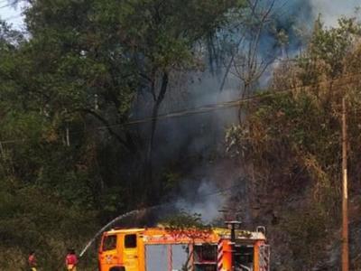 Otra vez, en Alto Paraná se registraron        incendios en varias reservas forestales