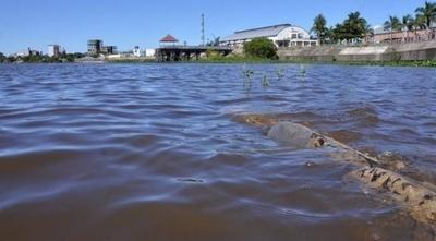 El río Paraguay sigue creciendo y se acerca a su nivel normal