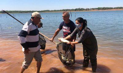 Siembran 1.000 peces en Lago Yguazú