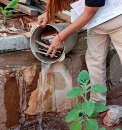 Aumentan notificaciones de dengue en Central e instan a eliminar criaderos