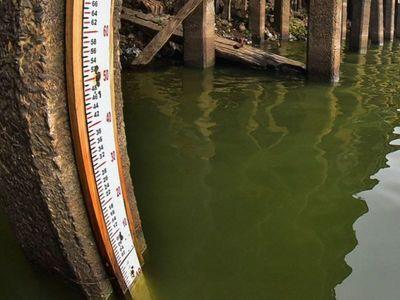 Lluvias importantes para paliar déficit del nivel del río llegarán el próximo mes