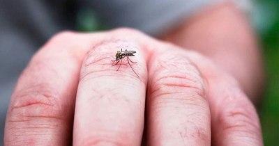 La Nación / Aumentan notificaciones de dengue en capital y Central