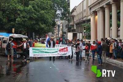 Campesinos marchan en la capital ante promesas incumplidas, acusan