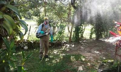 SENEPA insta a ciudadanía a eliminar criaderos de dengue